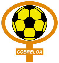 Club de Deportes Cobreloa S.A.D.P