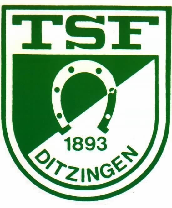 TSF Ditzingen 1893 e.V. I